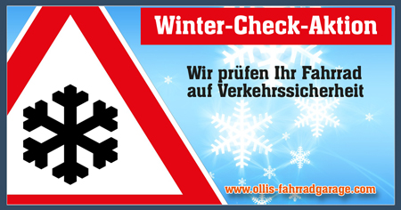 Aktion Winter Check web